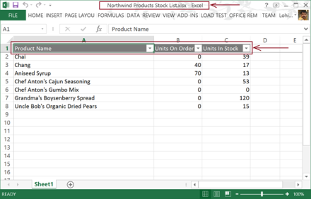 Excel Export File with Filters