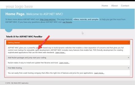 UI for ASP.NET MVC -  Standard Project Type