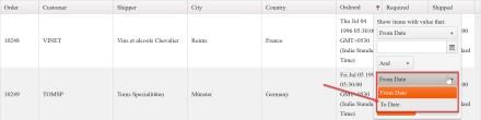 Kendo UI Grid with Custom Date Filter